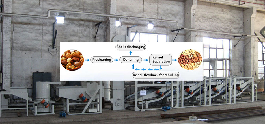 Low Power Consumption Buckwheat Decorticator