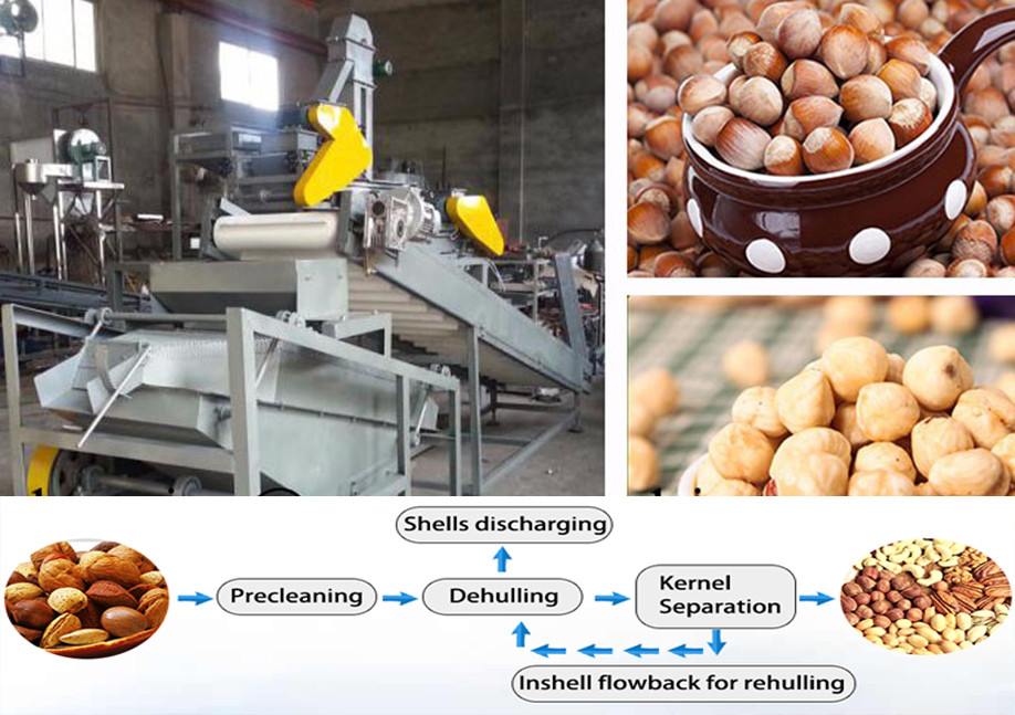 Industrial usually used pumkin seeds oil press machine