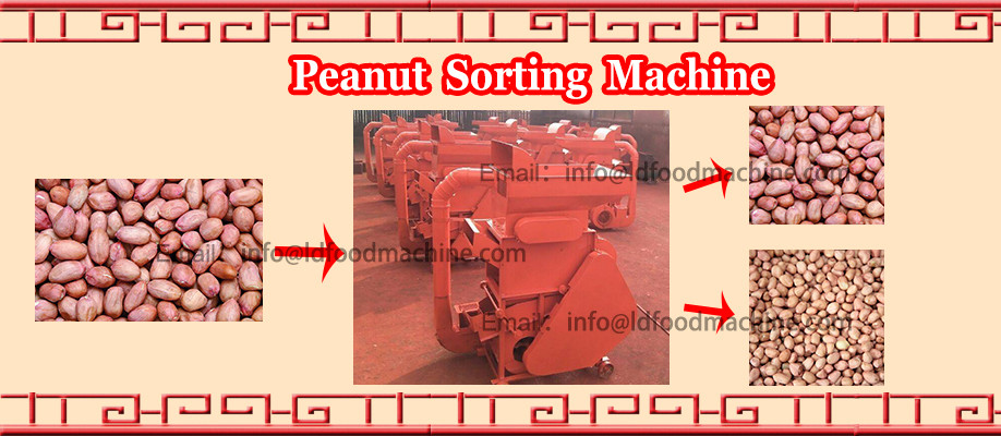 Commerial Oat Sunflower Pumpkin Seeds Dehulling Machine