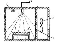 Study on Drying Process of Silkworm Cordyceps