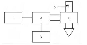 Pleurotus eryngii vacuum microwave drying process