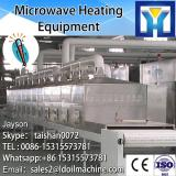 Gas big capacity fruit drying machine For exporting