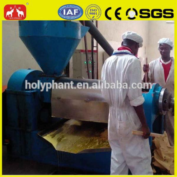 factory price pofessional 6YL Series grape seed oil extraction machine #4 image