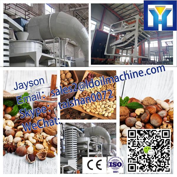 HPYL-200 Big Capacity Cold Oil Press Machine #2 image