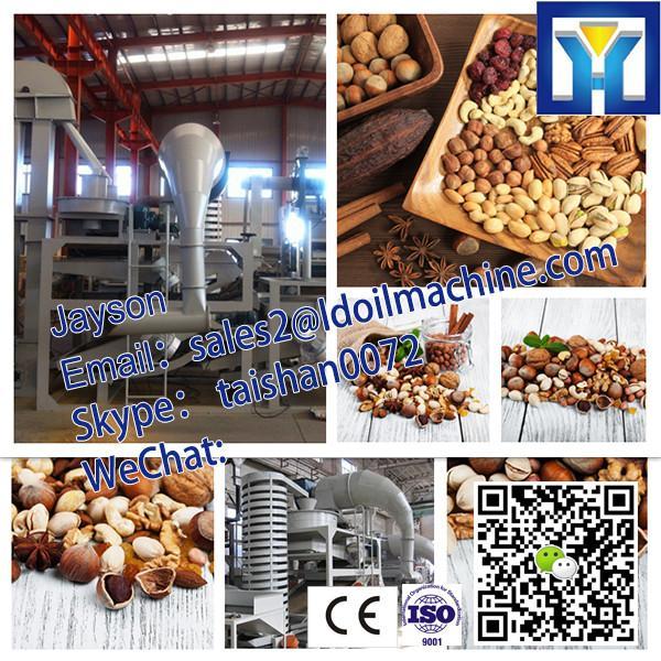 HPYL-200 Big Capacity Cold Oil Press Machine #3 image