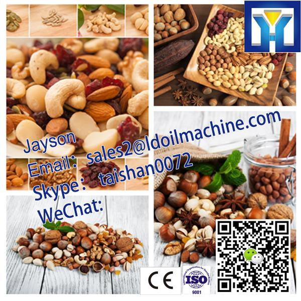 6Y-230 50kg/h hydraulic oil press machine for sesame seeds(0086 15038222403) #3 image