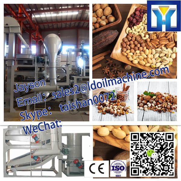 factory price pofessional 6YL Series argan oil press machine #1 image