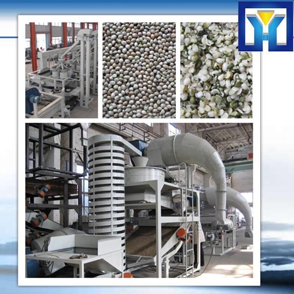 Small Olive Cold Press Oil Machine Price #1 image
