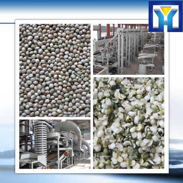 6YL Series groundnut oil making machine #1 image