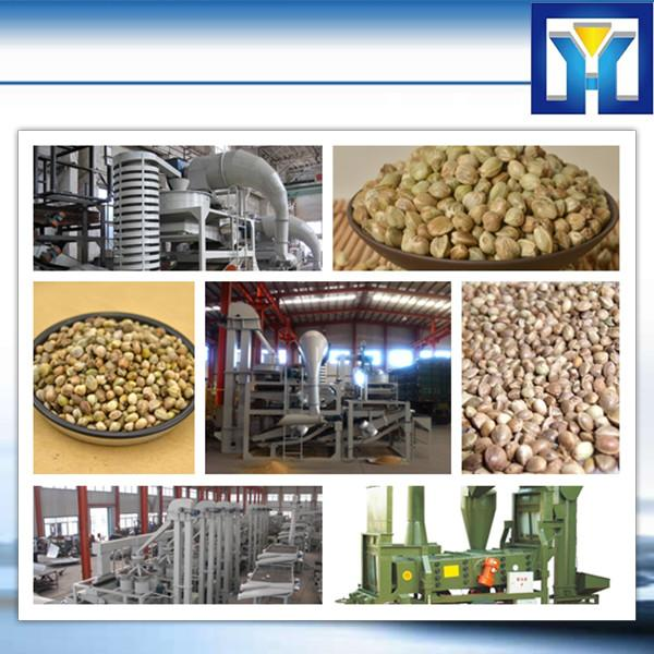 20 years experience and many successful cases complete soybean/palm/cottonseeds/peanut/sunflower Oil Refinery Line(1-100T) #1 image