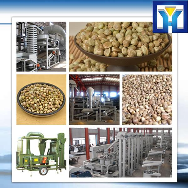 factory price pofessional 6YL Series canola oil mill #1 image