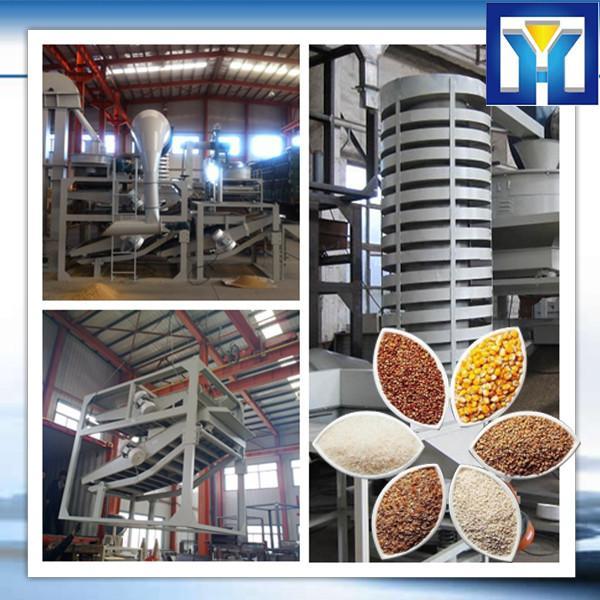 HPYL-200 Big Capacity Cold Oil Press Machine #1 image