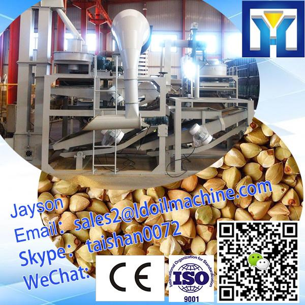 10-100TPD Buckwheat Processing Line #1 image