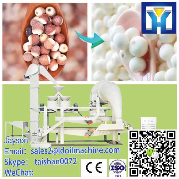 Chinese Organic Hulled Hemp Seed #1 image