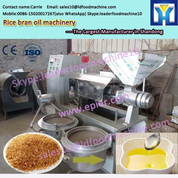 Mini oil mill plant for rapeseed oil line #1 image