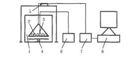 Microwave Drying Characteristics and Kinetic Model of Mushroom