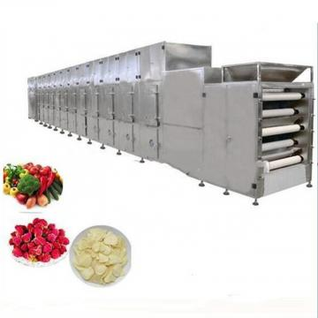 Stainless Steel Fruit vacuum Freeze Drying Machine