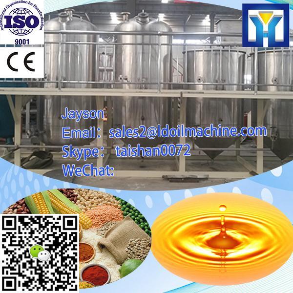 Big capacity 25-30T/D palm kernel/soybean/cotton/sunflower/rapeseeds oil press machine HPYL-200 #3 image