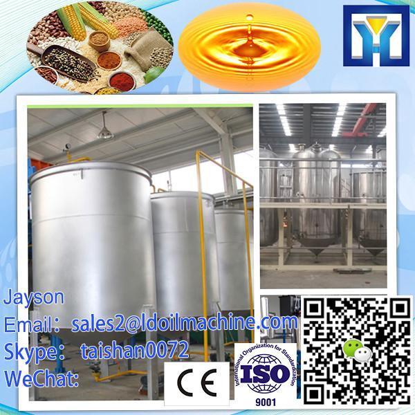 Big capacity 25-30T/D palm kernel/soybean/cotton/sunflower/rapeseeds oil press machine HPYL-200 #1 image