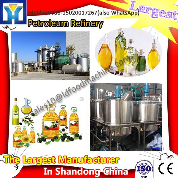Small plant vegetable oil processing line #1 image