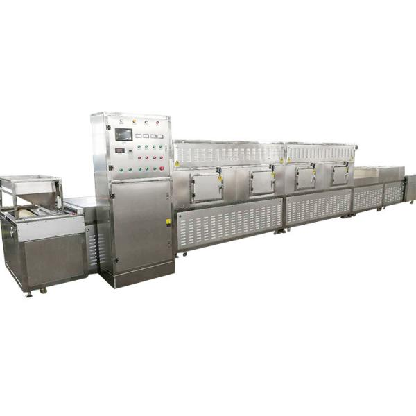 Commercial Vacuum Tray Microwave Dryer for Food/Chemical/Medicine Industries #2 image
