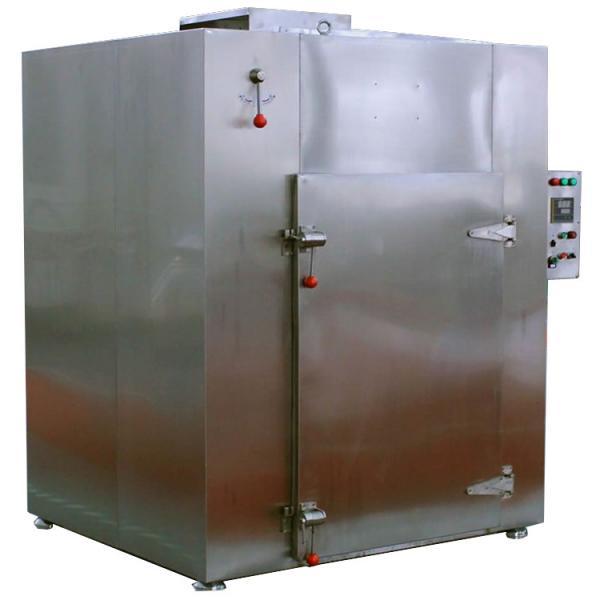 Industrial Hemp Hot Air Continuous Belt Fruit Dryer Drying Machine #3 image