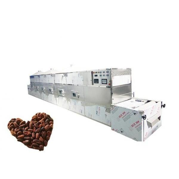 Fully Automatic Industrial Tunnel Microwave Baking Oven #1 image