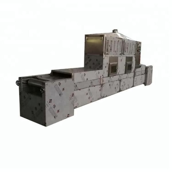 Fully Automatic Industrial Tunnel Microwave Baking Oven #2 image