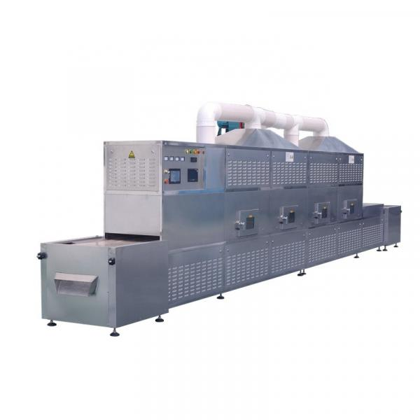 Commercial Vacuum Tray Microwave Dryer for Food/Chemical/Medicine Industries #1 image