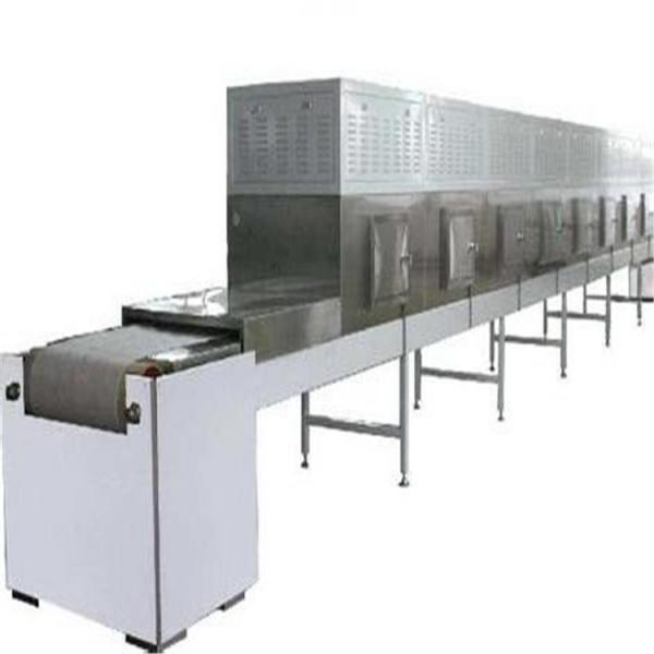 Large Commerical Quality Microwave Vacuum Tray Dryer Machine for Food Processing Industries #2 image