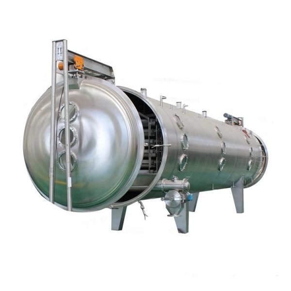 Uniform Water Removal Saving Time Fruits Vegetables Seafoods Hot Air Drying Machine #3 image