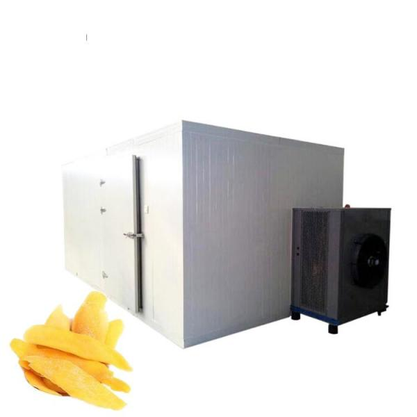 Vacuum Hypothermia Fruit Freeze Drying Machine #1 image