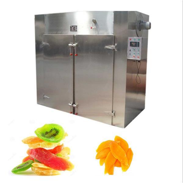 Vacuum Hypothermia Fruit Freeze Drying Machine #3 image