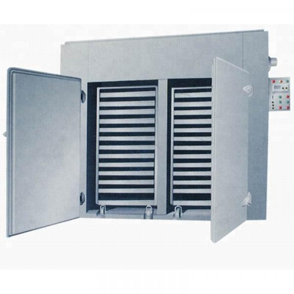 Industrial Hemp Hot Air Continuous Belt Fruit Dryer Drying Machine #1 image