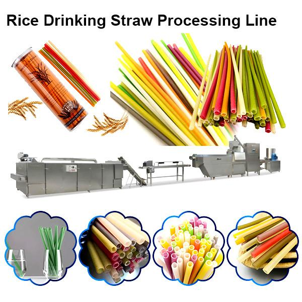 Full automatic eco-friendly Edible pasta drinking straw making machine / disposable straw machine #1 image