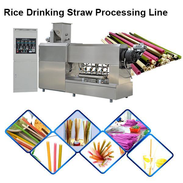 2020 popular automatic industrial long cut pasta rice macaroni rice drinking straw making machine #1 image