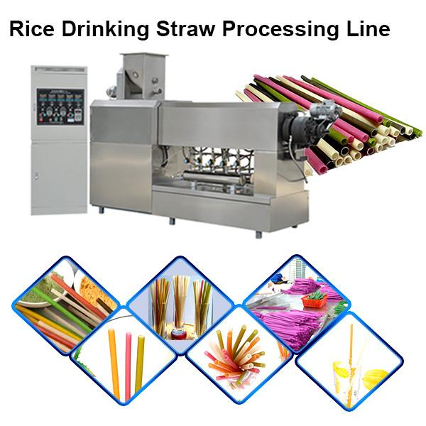 2020 Rice Pasta Wheat Disposable Drinking Straw Making Machine #3 image