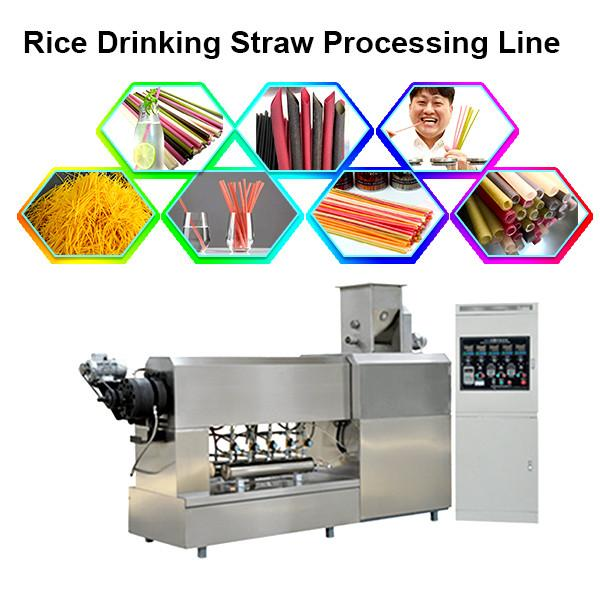 Full automatic eco-friendly Edible pasta drinking straw making machine / disposable straw machine #2 image