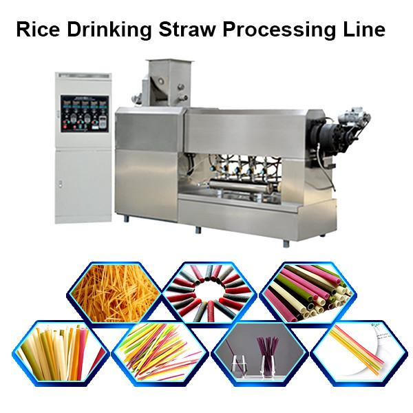 China Manufacturer Pasta Spaghetti Macaroni Food Making Machine/Production Line #1 image