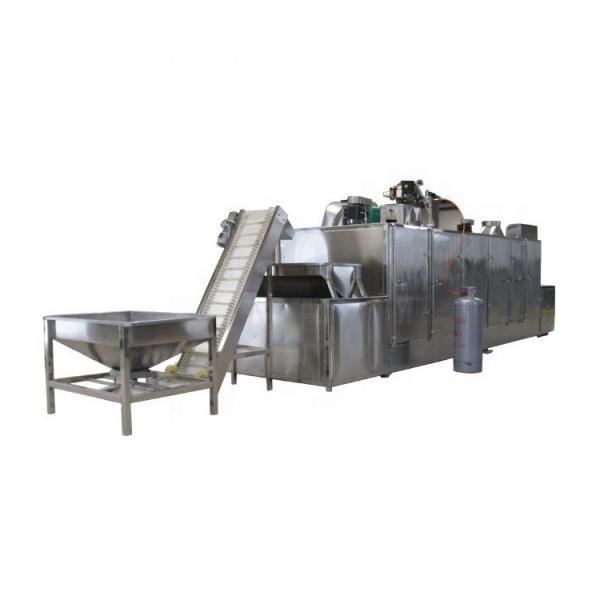 Industrial Belt Conveyor Continuous Microwave Shrimp Dryer Drying Machine #1 image