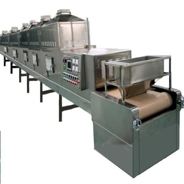 Dw Series Continous Industrial Mesh Belt Conveyor Dryer #3 image